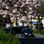 Spring1car